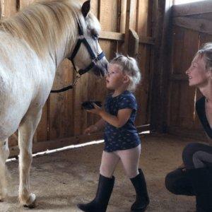 séance poney enfant Pagnoz Les Chevaux de Beltane